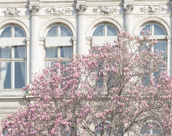 Paris Photograph - Hotel de Ville and Magnolia,Travel Photograph, French Urban Home Decor, Large Wall Art
