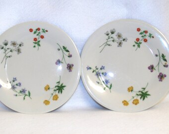 Royal Doulton Bread and Butter Plates, Pair, Springtime