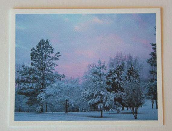 Pastel Frost, note card, blank greeting card, winter wonderland, fine art, single card, photo greeting cards, woodland scene, frost, trees