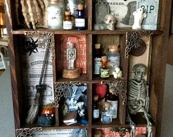 Halloween Curiosities/Oddities Medium Shadowbox