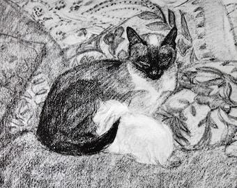 Steinlen Cats vintage art booklet / boho cats / cat art study / Montmartre bohemian / cat lover art / cat illustrations / cat drawings