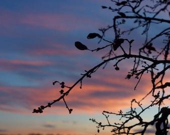Sunset Photography, Nature Photography, Art Decoration, Wall Art Metallic Print