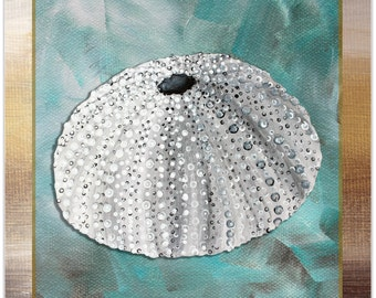 Beach Decor 'Silver Lining Sea Urchin' by Megan Duncanson - Coastal Bathroom Art Beach Painting on Metal or Acrylic