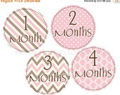 Sale Month Stickers Milestone Stickers Brown Pink Baby Girl Stickers Monthly Baby Stickers Baby Monthly Stickers Baby Month Stickers