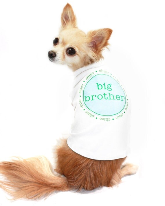 Little Brother Dog Tee  Personalized Custom Name Big Brother Sister Puppy Dog Pet Tee T Shirt