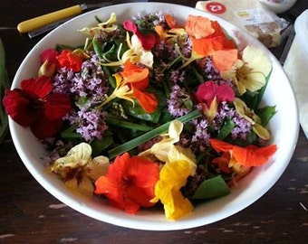 BAGGED Chemical-free herb salad pack with edible flowers, England and Wales only