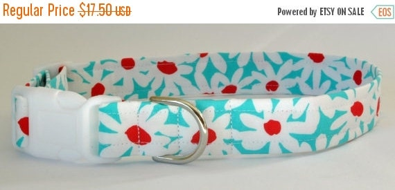 """Sale 20% Off Dog Collar Cute Turquoise Floral - """"Daisy Doolittle""""-NO EXTRA CHARGE for colored buckles"""