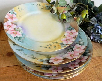 Six Hand Painted Rosenthal Luncheon Side Salad Plates Pink Florals
