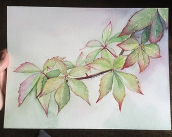 Japanese Maple ORIGINAL Watercolor Painting 9x12, Plants, Trees, Nature Painting, Maple Leaf, Leaves