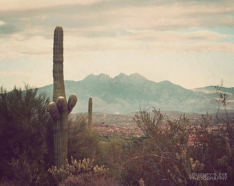 Southwest photography, nature photograph, desert, landscape photo, Arizona, fine art - Vintage West
