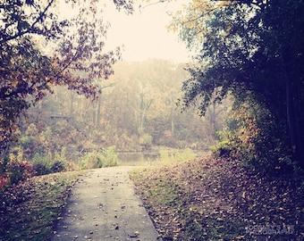 Landscape photography, fall photo, autumn decor, dreamy, neutral, nature photograph, fine art print - Fall Dream