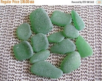 bulk sea glass pack containing 12 medium sized pieces of emerald green, kelly green genuine sea glass  beach glass