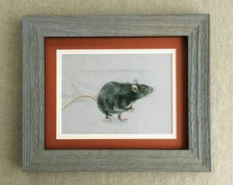 Print Black Rat