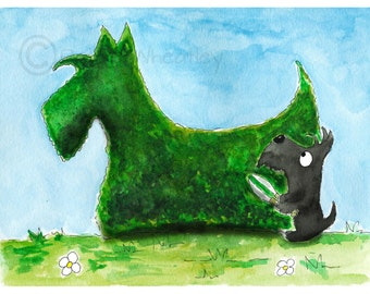 Scottie Dog Art Print Scottish Terrier 'Hedge Fun' #186