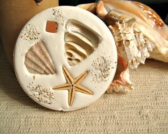 Absorbent drip free coasters for your beach home (4). Made in Florida. Handmade unique home accents. Real shells embedded in absorbent clay.