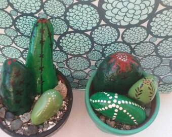 Small Cacti Rock Pot Garden
