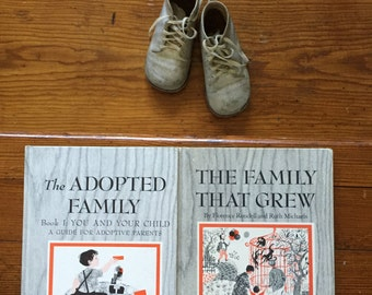 The Adopted Family & The Family that Grew, Slipcase Set, Florence Rondell, Ruth Michaels, Sweet MCM Illustrations, 1965, Chosen Children