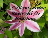 Custom bag.  Reserved for Heather.