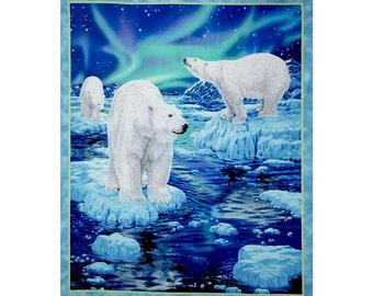 Northern Lights -164924423B Panel