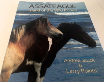 Assateague - Island of the Wild Ponies by Andrea Jauck and Larry Points