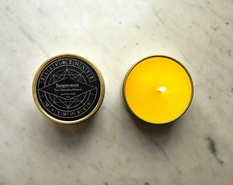 Orangerie, Orange Scented Candle, Citrus Candle, Vegan Soy Candle, Christmas Gift, Man Candle, Gift for Her, Scented Candle, 8 oz Tin