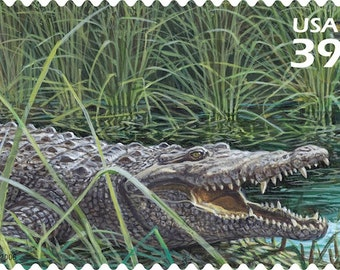 10 Unused Crocodile Stamps // Florida Wetlands Postage: American Crocodile Alligator Green Postage Stamps for Mailing
