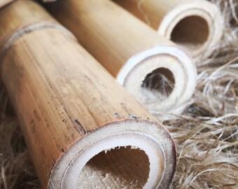 Bamboo Bike Frame Tubeset | 40-64cm