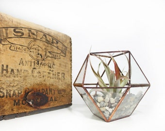 Geometric Terrarium / Medium Stained Glass Terrarium / Copper Cuboctahedron