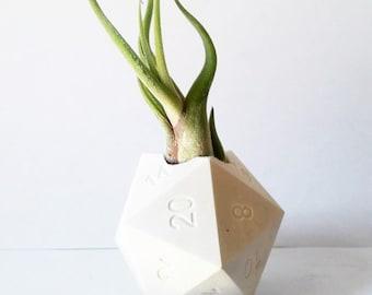 D20 gift, geometric air plant holder, gamer gift, critical hit, geekery