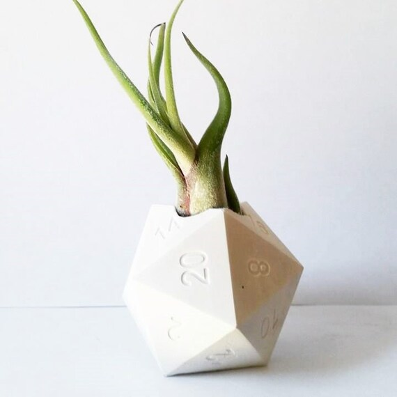 D20 gift, geometric air plant holder, gamer gift, critical hit, geekery