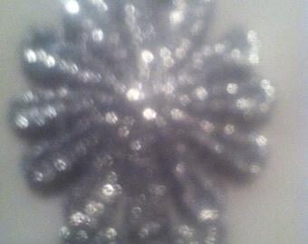 Silver trim