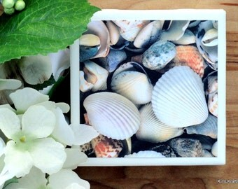 Seashell Tile Coasters, Tile Coasters, Coaster, Coasters, Tile Coaster, Beach Coasters, Seashells, Ceramic Coasters, Coaster Set of 4