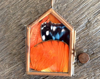 Butterfly Wing and Pressed Botanicals Pendant