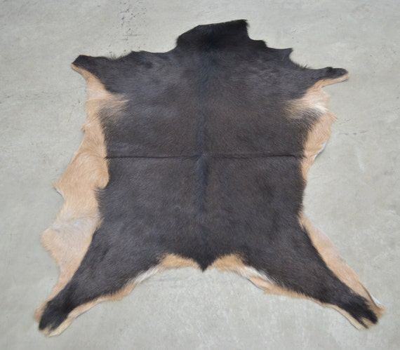 Leather Hide Large Hair On Goat Hide 36 X 28 Two