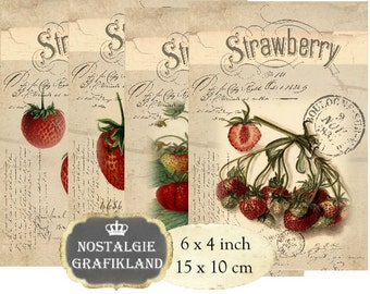 Fruits Strawberries Jam Confiture Marmalade 6 x 4 inch Instant Download digital collage sheet D210