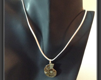 Ammonite pendant on the leather
