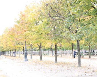 Paris Photography - Paris Print - Paris Decor - Paris Wall Decor - French Decor - Paris Wall Art - Autumn in Paris - Tuileries Gardens