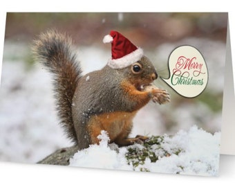Merry Christmas Cards, Christmas Card Pack, Cute Xmas Cards, Squirrel Xmas Cards, Animal Xmas Cards, Christmas Card Set, 10 Xmas Cards