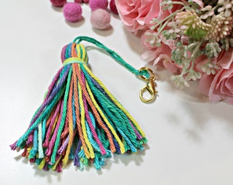 Rainbow Yarn Tassel