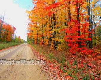Northern Michigan Country Dirt Road Landscape Photography Red Orange Leaves Blazing Fall Colors Autumn Trees Woodland Wall Art Color Print