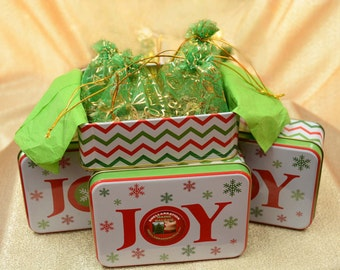 FRESH MAINE Balsam *(4) Fragrance Sachets in a Holiday JOY Tin* Scent your Home with Balsam Fir** Fresh from the Maine Woods**