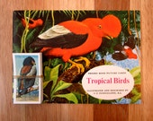 PG Tips Brooke Bond Tropical Birds Collector's Album & Separate Set of Picture Tea Cards