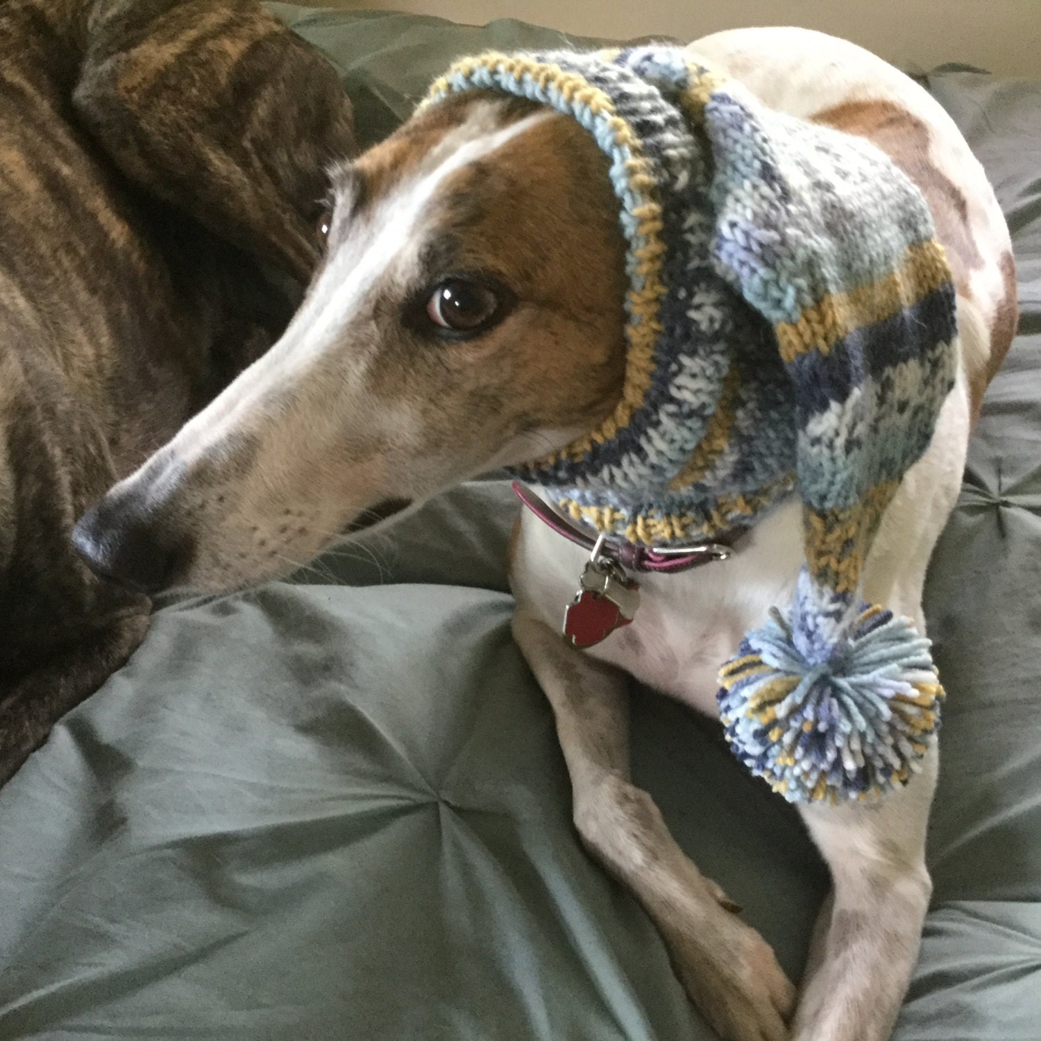 Pointed hat with snood for greyhound fair isle pattern china blue gallery photo gallery photo gallery photo gallery photo gallery photo bankloansurffo Images