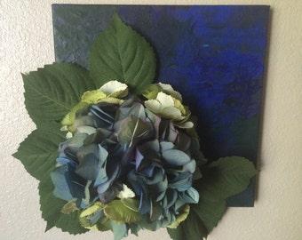 Blue & green hydrangea dream.