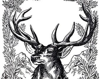 Vintage deer - Temporary Tattoo