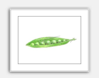 Snow Peas Watercolor Illustration Peas in a Pod Art Print Instant Download Wall Art