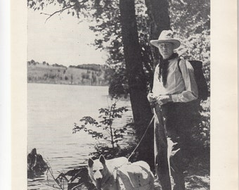"""Eskimo Sled Dog In Summer Carrying 20 lbs In His Rucksack,1937 British Dog Print,Approx 8"""" X 10.5"""""""