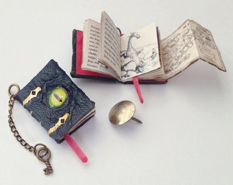 Miniature Dragon Book (with printed pages, illustrations, and pull out map)