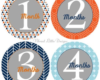 Baby Boy Monthly Stickers, Milestone Stickers, Month Stickers, Baby Month Stickers, Baby Stickers  #35