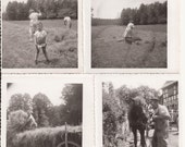 1949 Photos of the Harvest, Vintage Photographs, Germany, Working the Field, Black and White Photos, Set of Four, Historically Interesting